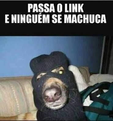Doguinho 1 - meme