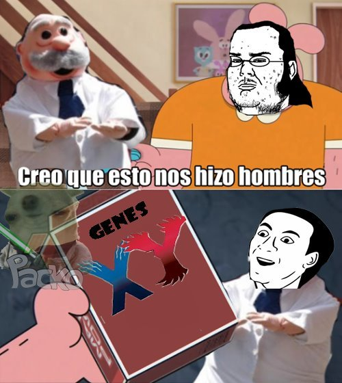 Pokemon X + pokemon Y = un men - meme