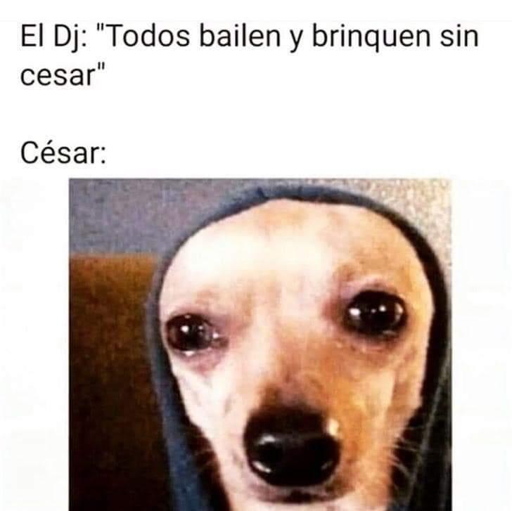Bailan sin Cesar, hasta q aparezca Cesar y lo arruine todooo - meme