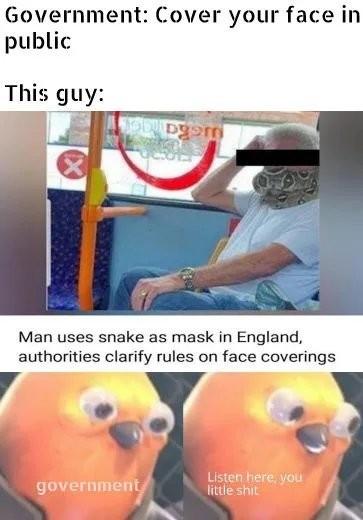 Clever Boy - meme