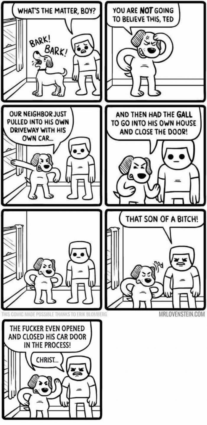 Why doggos be barking so much. Dog logic - meme