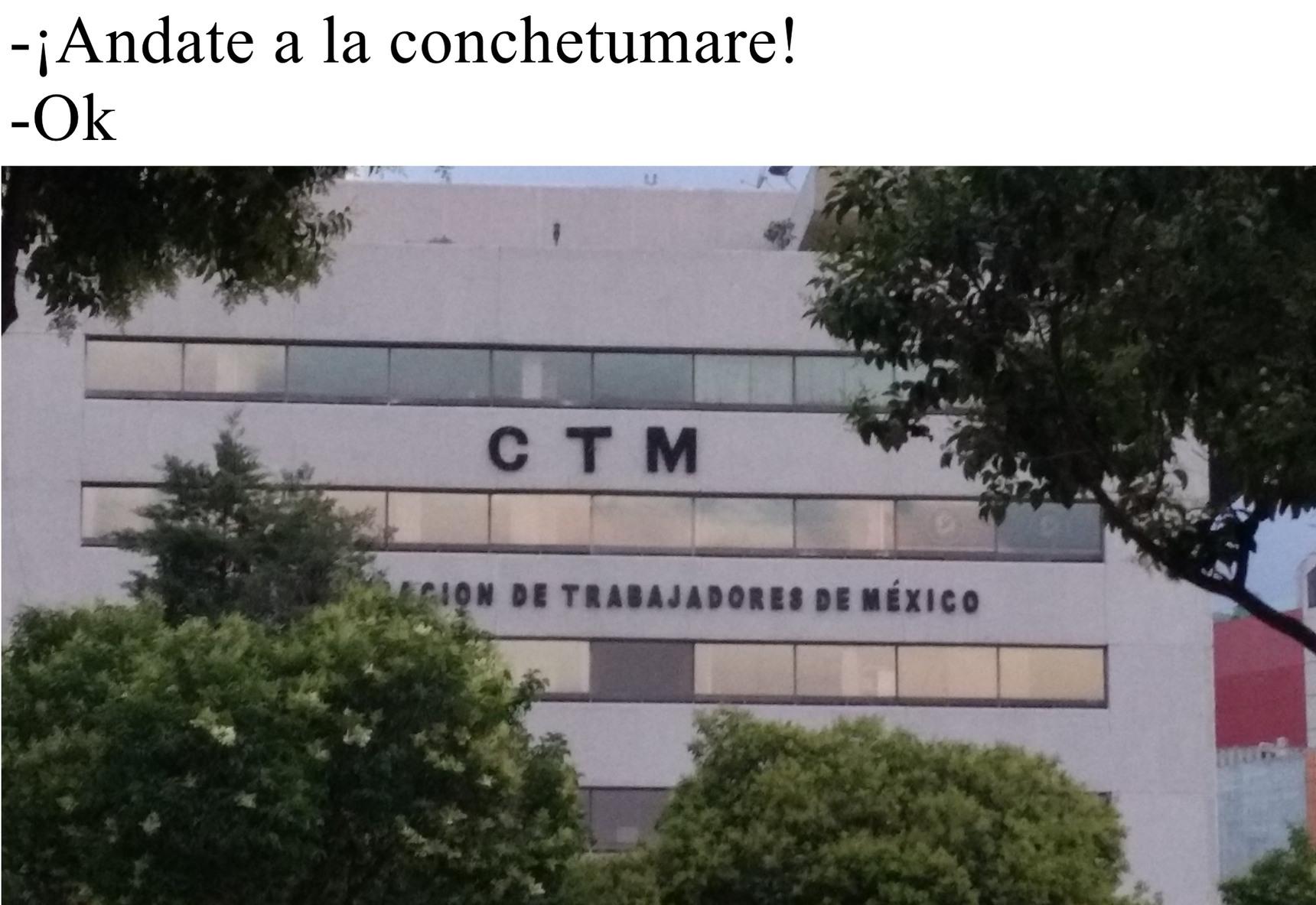 Conchetumare Bottom Text - meme