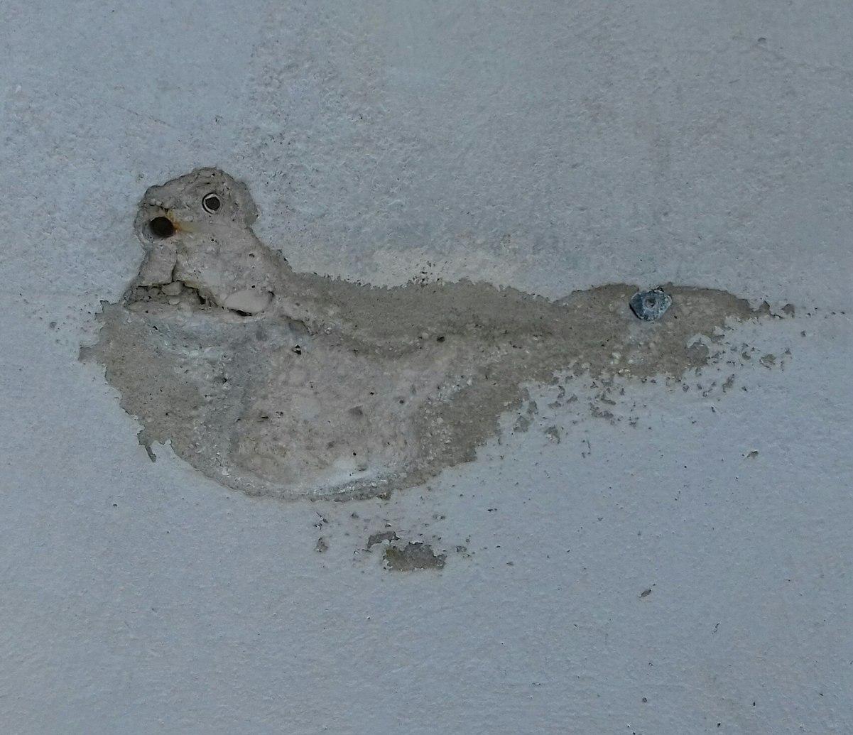 Fossile de pigeon - meme