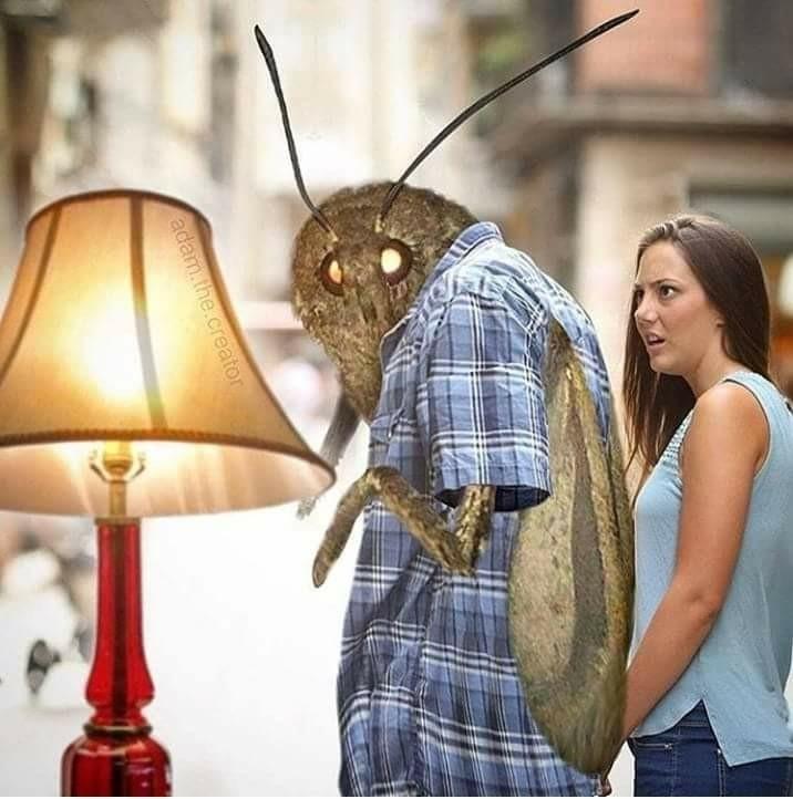 Light on !!! - meme