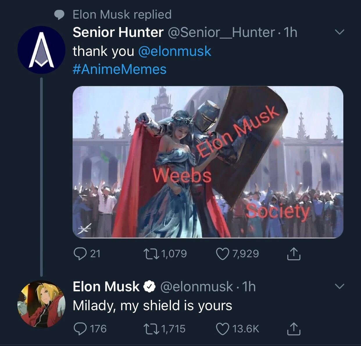 Elon Musk is making catgirls - meme