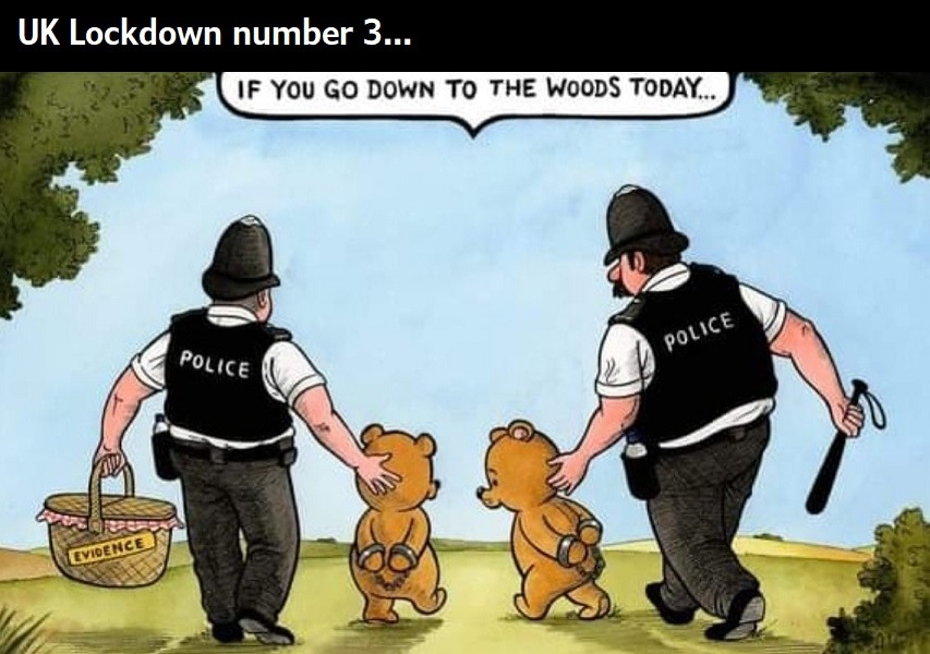 UK lockdown - meme