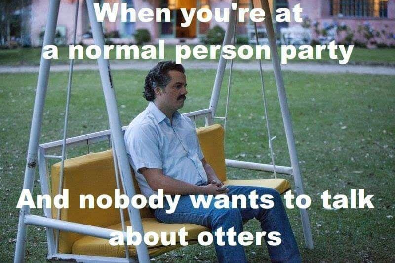 Escobar likes otts - meme