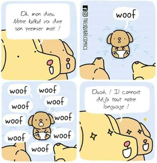 Alphabet - meme