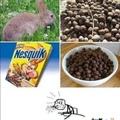 Nesquik is rabbit poop