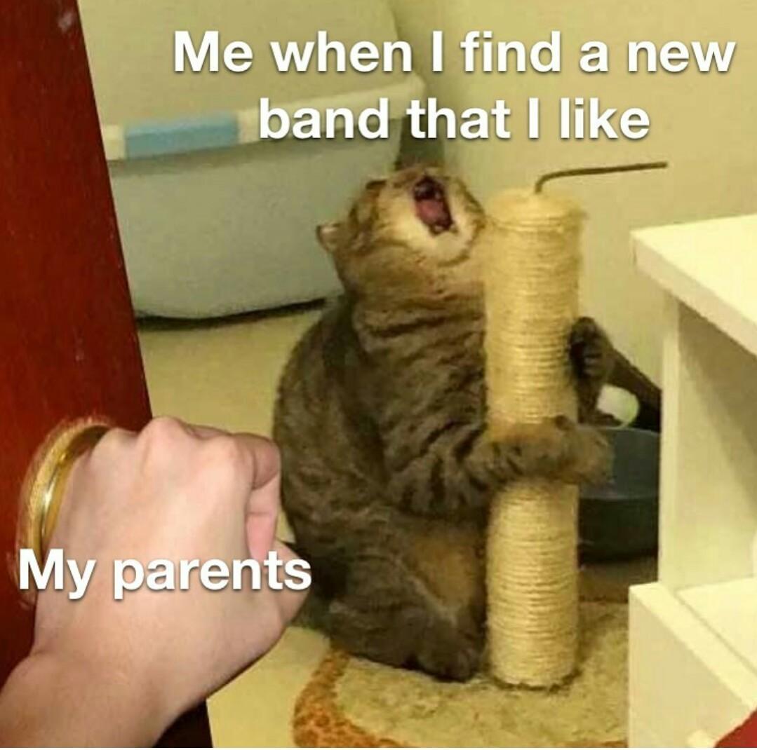 Orgasme auditifs - meme