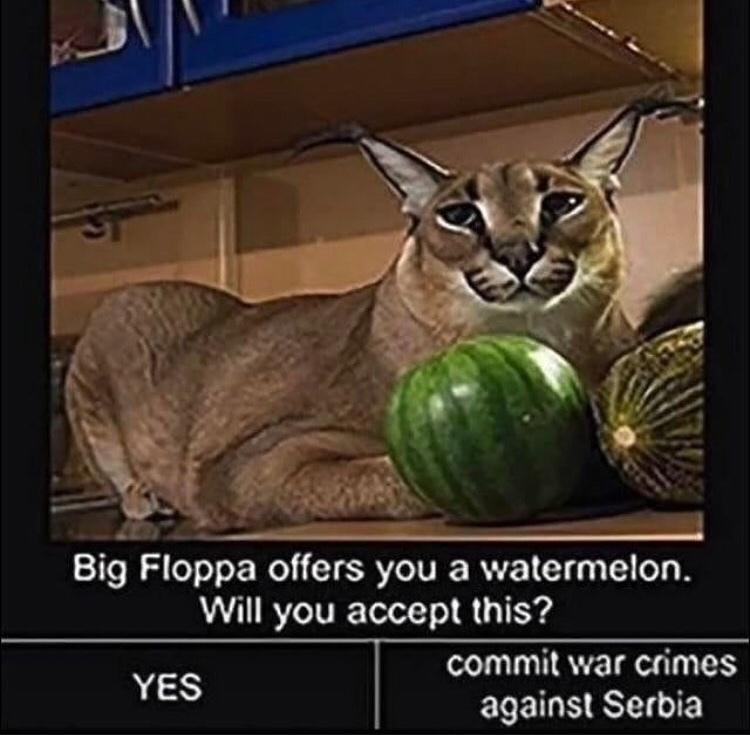 big floppa - meme