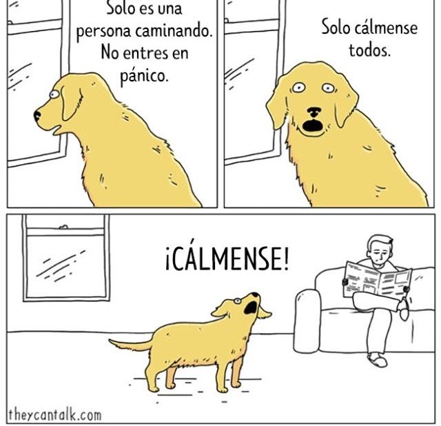 CÁLMENSE D: - meme