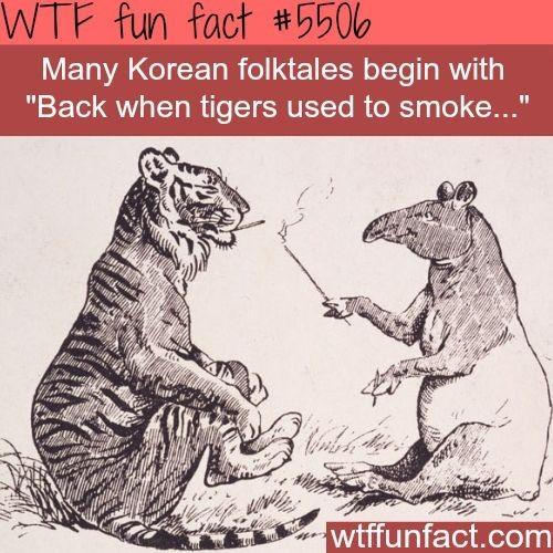 Smokin tigers - meme
