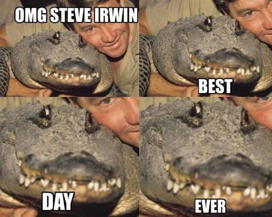 Steve Irwin, a real legend - meme
