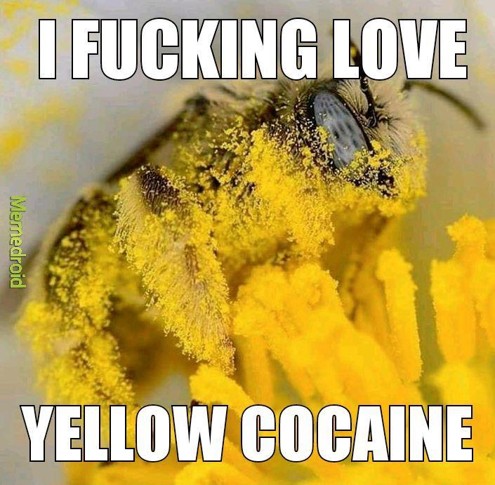 Bee crack - meme