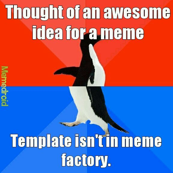 All the time. - meme