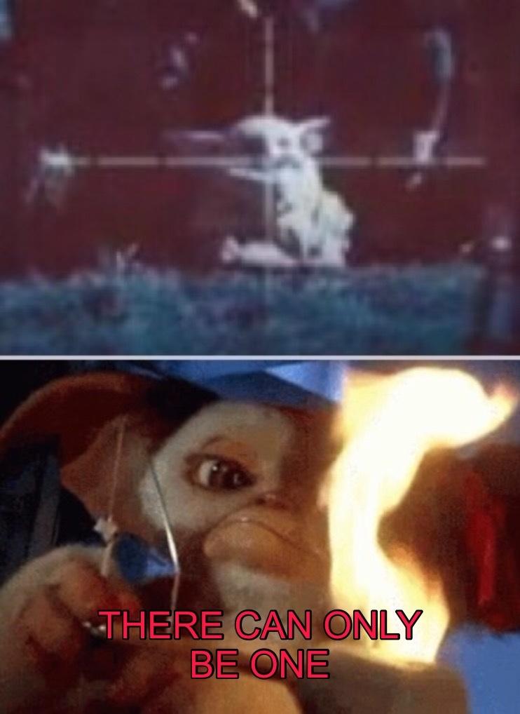 Baby Yoda v. Gizmo - meme