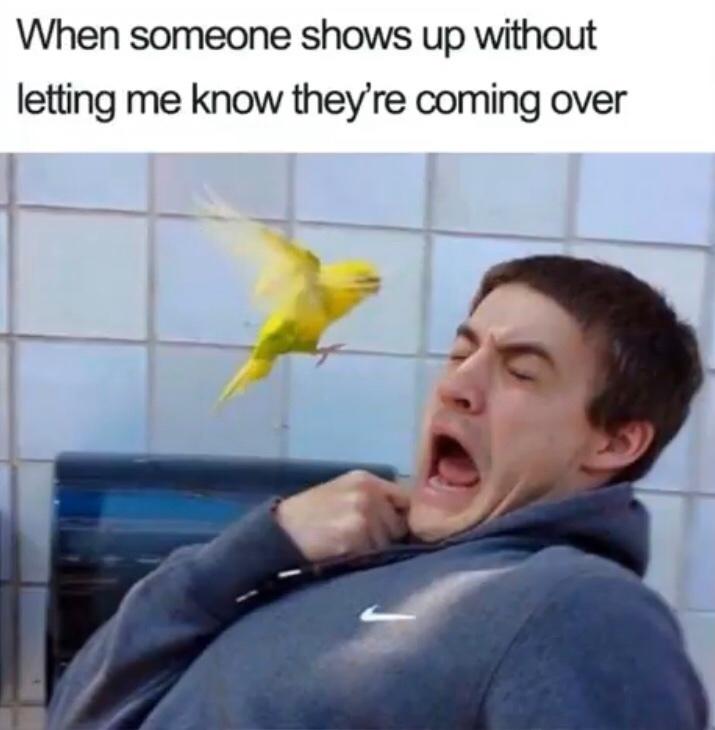 yep - meme
