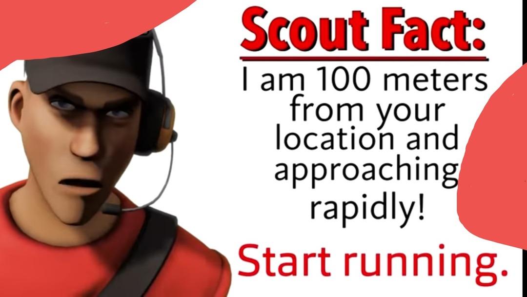 Scout - meme