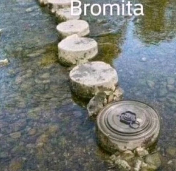 Bromita - meme