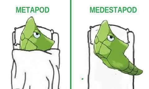 Pokimon - meme