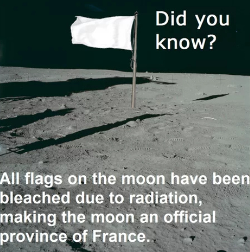 Flags in the moon - meme
