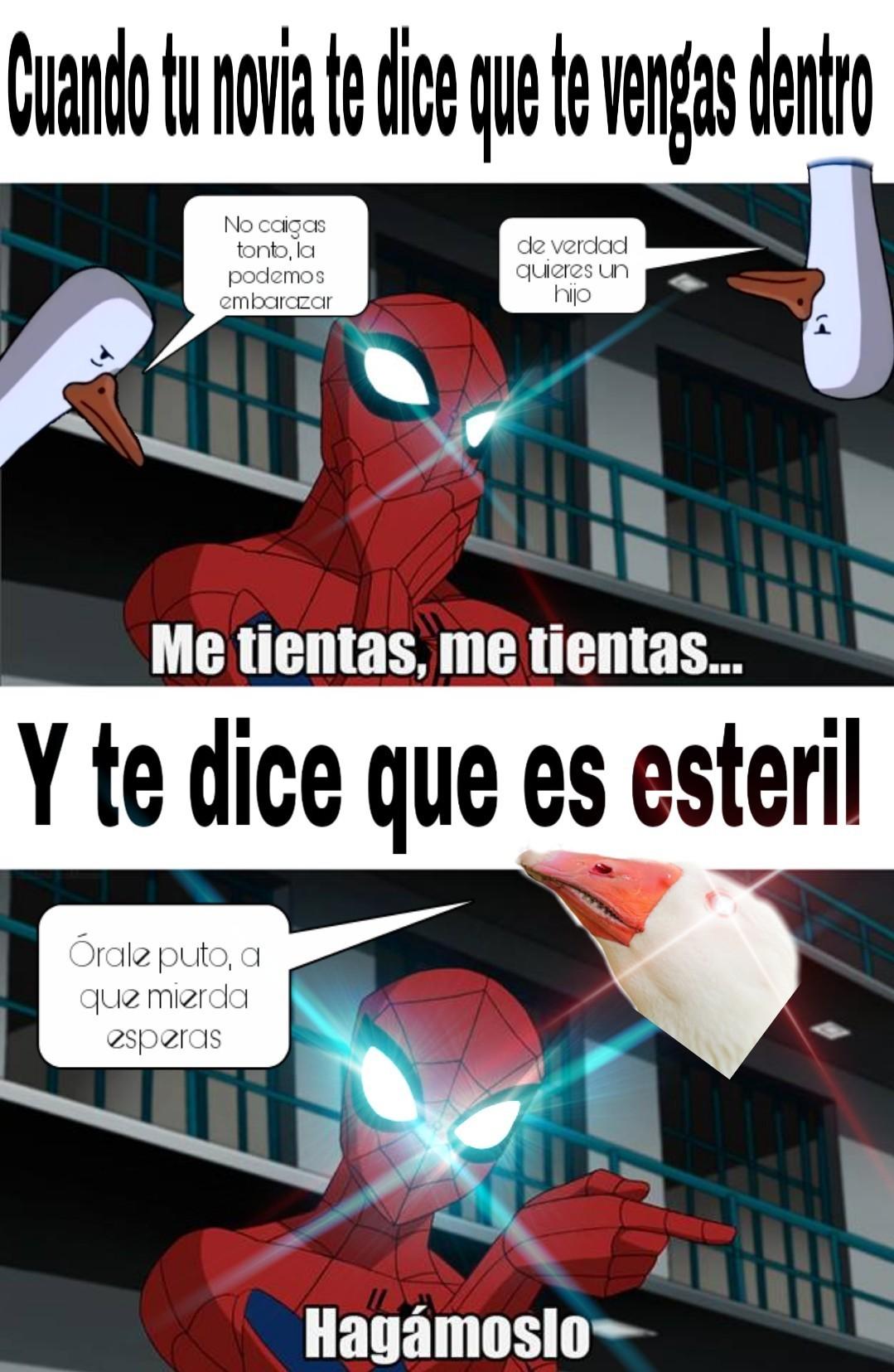 The amazing Ganso araña - meme