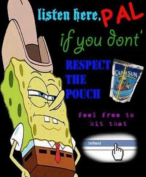 respect the pouch - meme