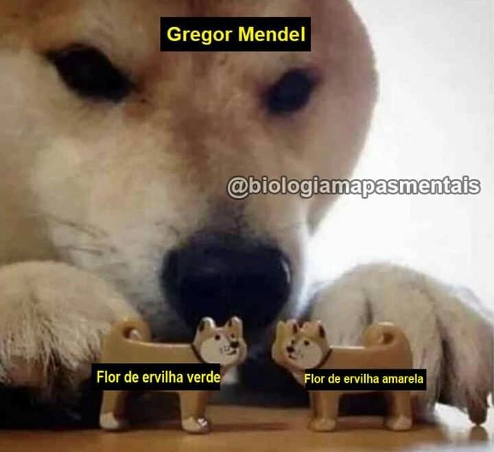GENETICA - meme