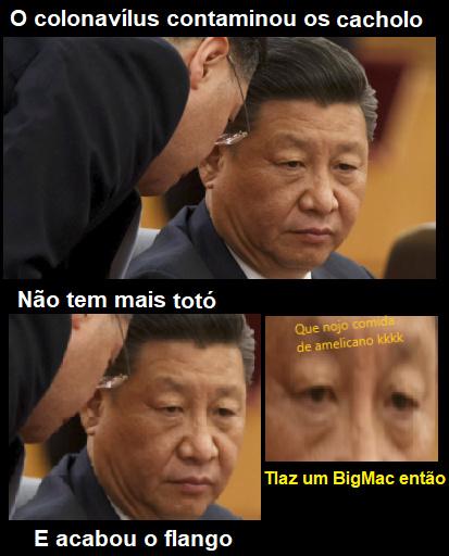 Brasil exportador de vira-lata caramelo pra China - meme