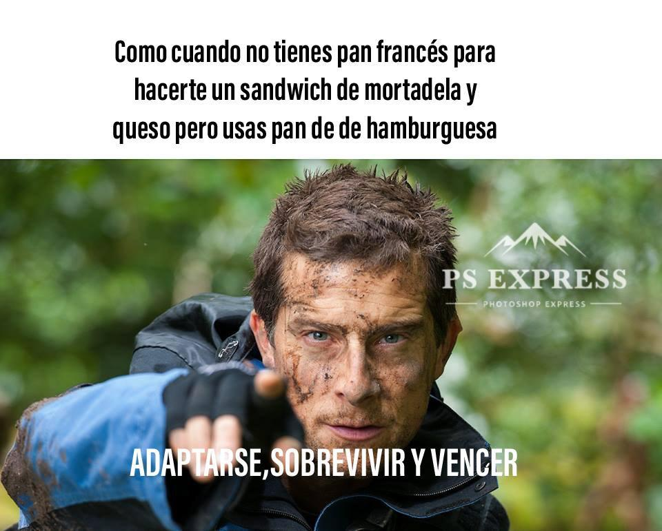El sandwich perfecto - meme