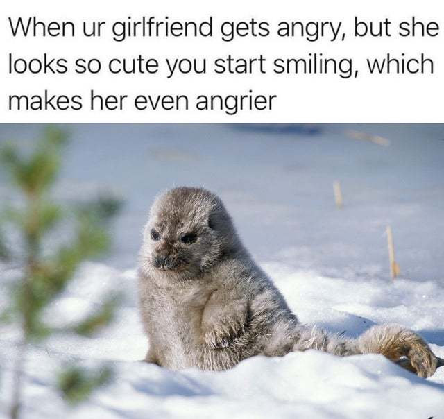 When you girlfriend gets angry but she looks so cute still - meme