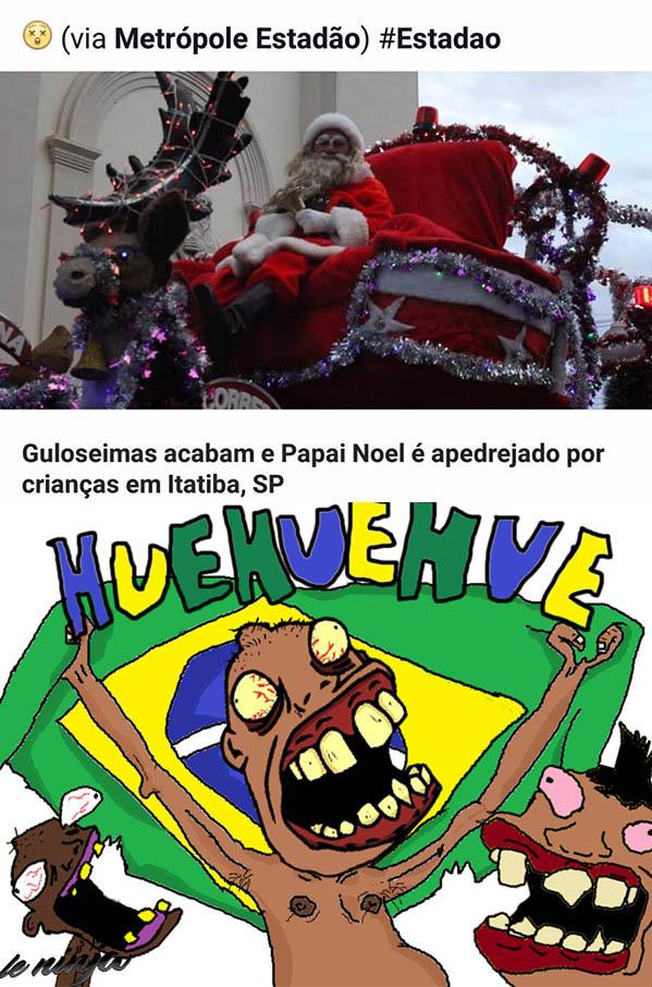 O Brasil é pra profissionais - meme