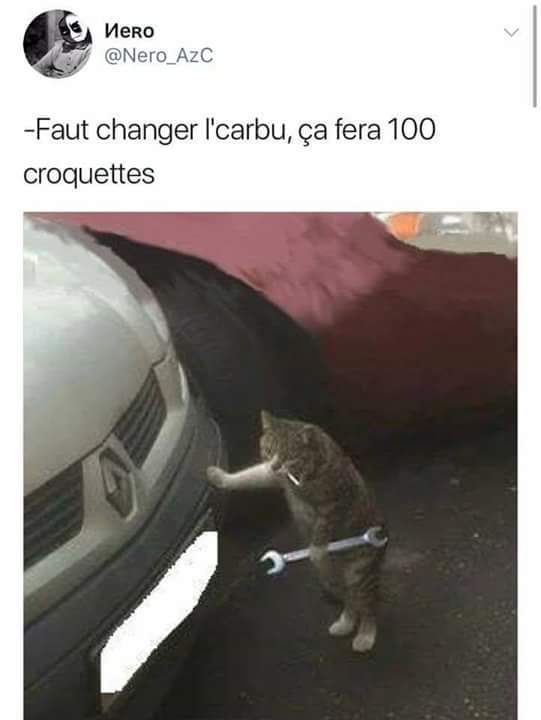 Chatcano - meme