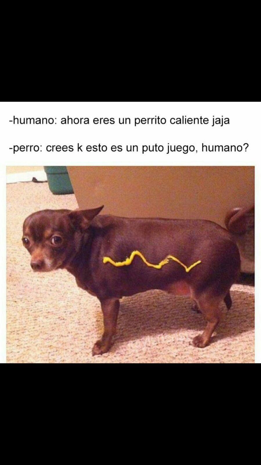 Humano pls - meme