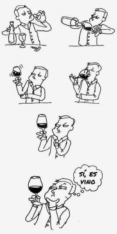 Para mi el vino es como vino, pero con sabor a vino... - meme