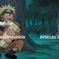 Articulo 51