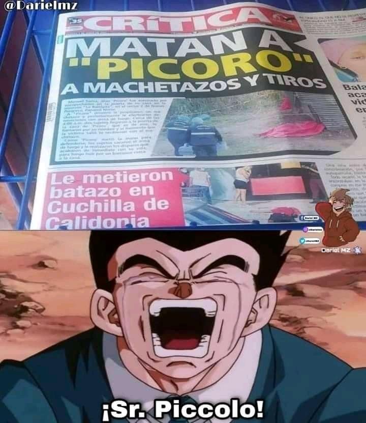 Nooo ¡sr Piccolo usted no! - meme