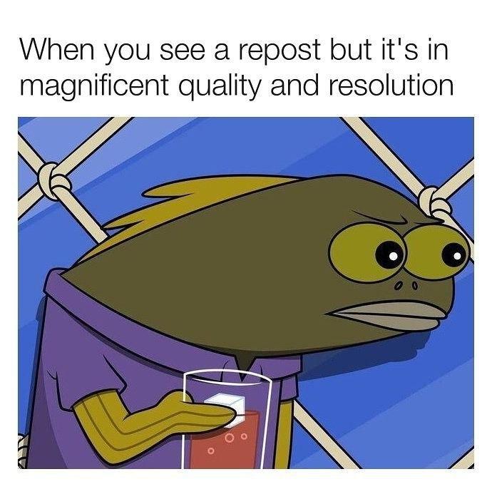 Quality? - meme