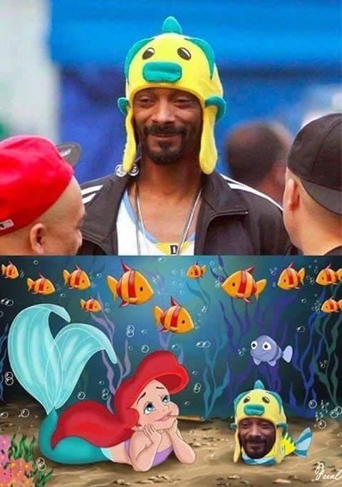 Sous l'océan les bédos sont présents - meme