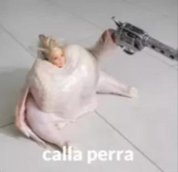 Idea número 172772 en la cuarentena, Proyectopollo - meme