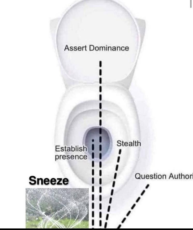 the sneeze - meme