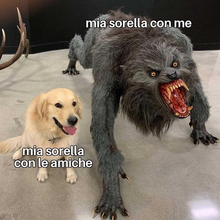 Cane blu - meme