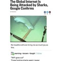 Every Week Is Mandatory Shark Week Or We Turn Off The Internet Again