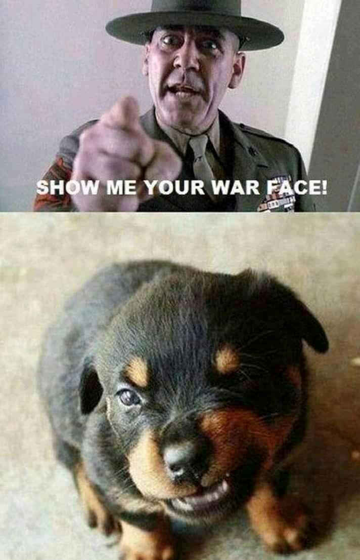 War face!!!! - meme
