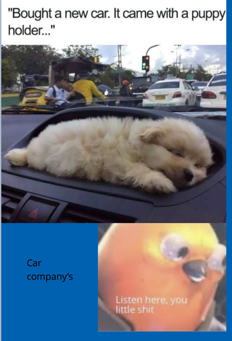 Pup holder - meme