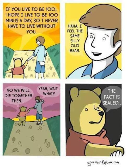 Silly ole bear - meme