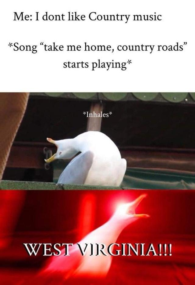 Honestly me - meme