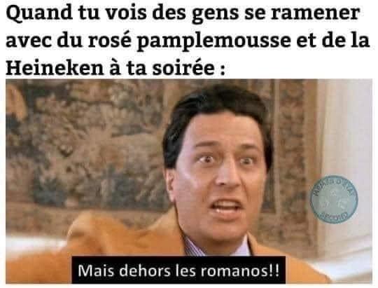 dehors les Romanos! - meme