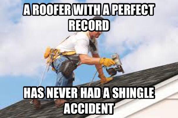 living the shingle life - meme
